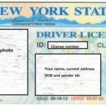 留学の注意点 その2: 身分証明書にパスポートは持ち歩かない!