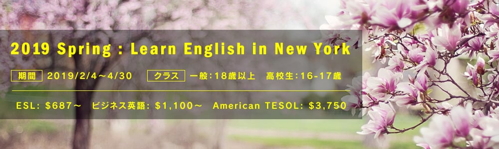 2019 Spring : Learn English in New York